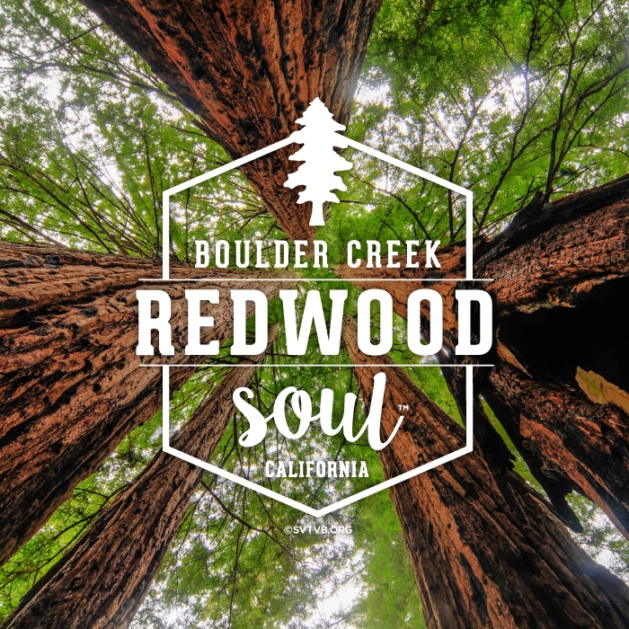 Redwood Soul - Boulder Creek, CA